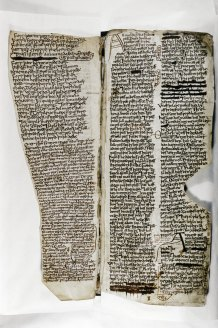 Digital Image of Folio 10r
