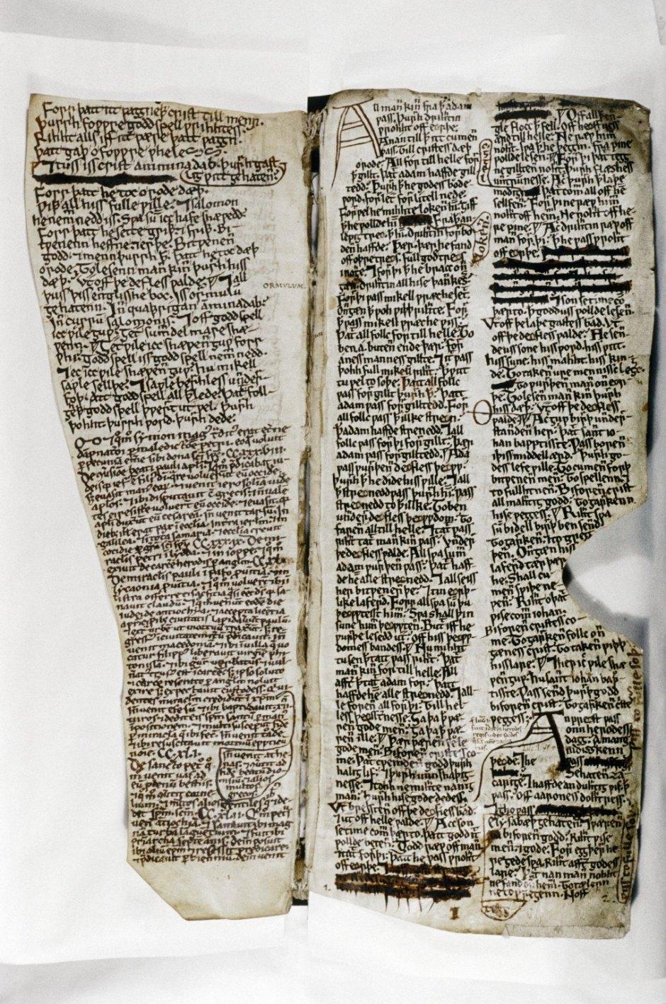 Digital Image of Folio 10r