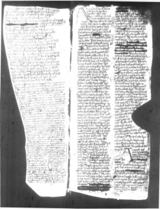 Microfilm Image of Folio 10r